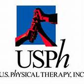 Premier Physical Therapy and Sports Performance Logo